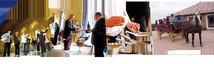 casino des vins visite guidée cours de cuisine promenade en calèche